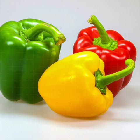 Produkte | Paprika